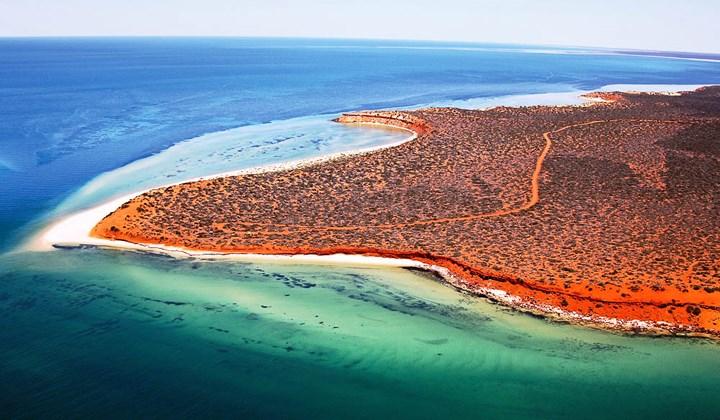 Vịnh Shark - Du lịch Úc
