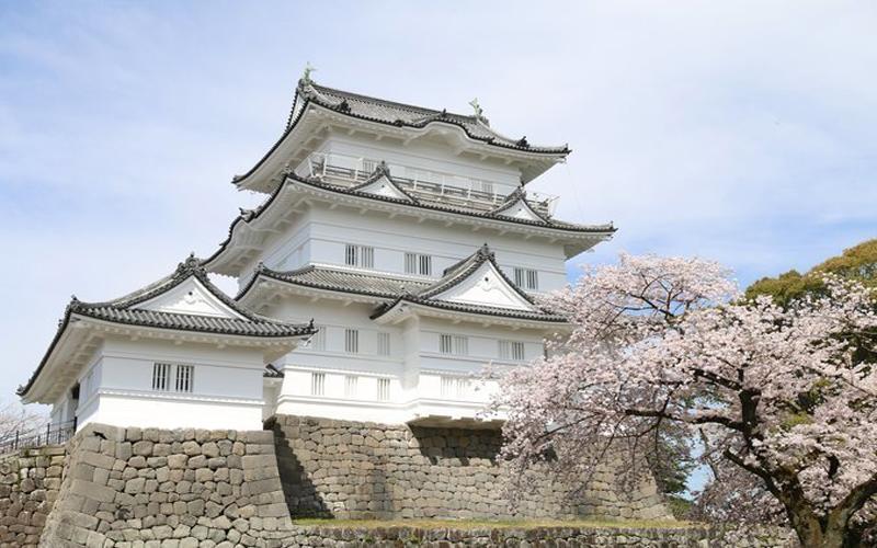 Ghé thăm Lâu đài Odawara