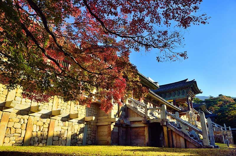 Chùa bao gồm nhiều dãy nhà ngang dọc, trang hoàng như một cung điện