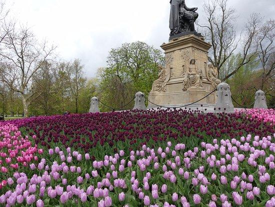Hoa trong công viên Vondelpark