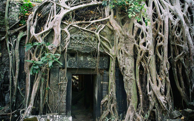 Khám phá Angkor Wat – công trình vĩ đại và bí ẩn