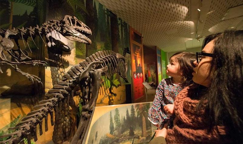 Anh: Điều giúp Bảo tàng Thế giới Liverpool thu hút du khách