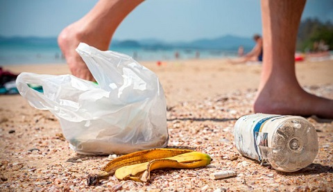 Rác vứt bừa bãi trên bãi biển ảnh hưởng đến môi trường du lịch Côn Đảo