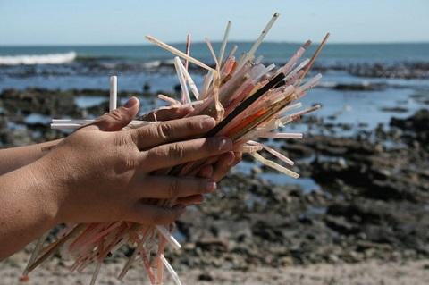 Không dùng ống hút nhựa giúp làm giảm rác thải bên bờ biển