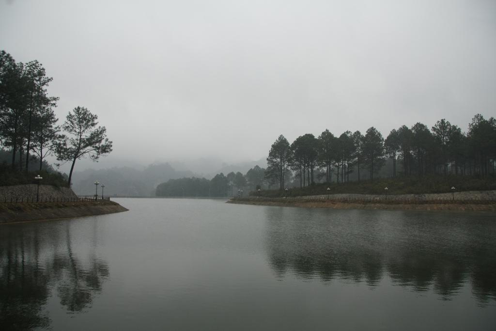 Khu đồi thông già Mộc Châu Sơn La