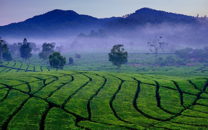 Indonesia kỳ vọng tiềm năng du lịch Bandung