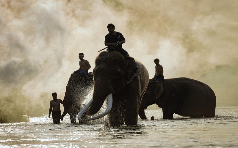 Du lịch Thái Lan đang hưởng lợi từ căng thẳng thương mại Mỹ-Trung?