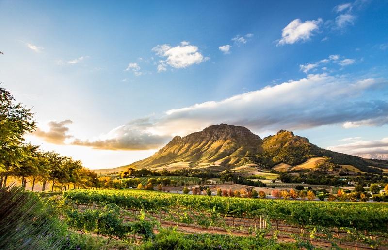 Du lịch quan trọng thế nào với kinh tế Nam Phi?
