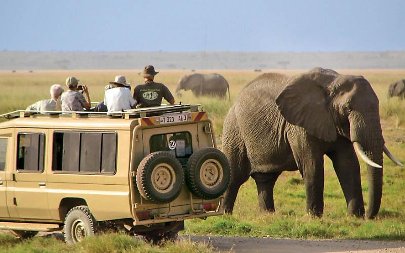 Tất tần tật về kinh nghiệm du lịch Kenya - Thiên đường hoang dã châu Phi