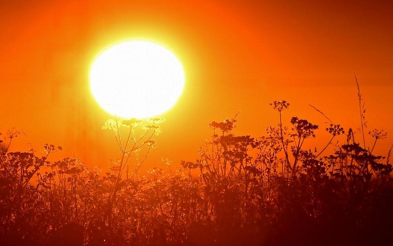 Nắng nóng trên 40 độ C bao trùm miền Đông nước Mỹ