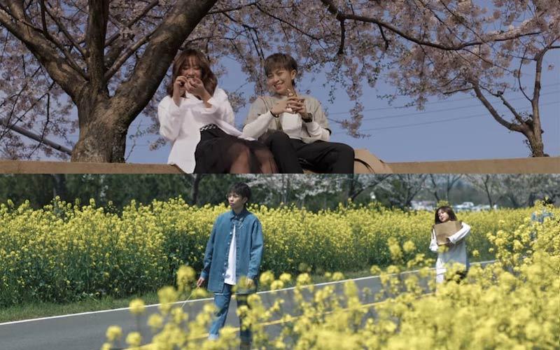 Đảo Jeju trong MV mới của Gil Lê - nơi tình mãi ru người