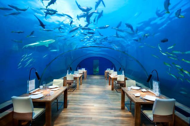 Top 8 nhà hàng đắt đỏ trên thế giới chỉ dành cho người giàu
