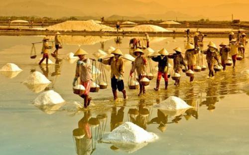 10 địa danh ở Quảng Ngãi khiến du khách mê đắm
