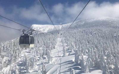 """Đến Nhật Bản khám phá khu rừng """"quái vật tuyết"""""""