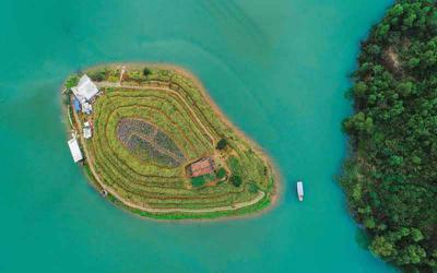 """Có một đảo hoa xinh đẹp giữa """"vịnh Hạ Long"""" ngay tại Thái Nguyên"""