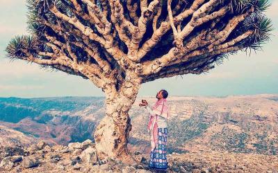 Yemen - Trong đổ nát mầm xanh vẫn nở hoa