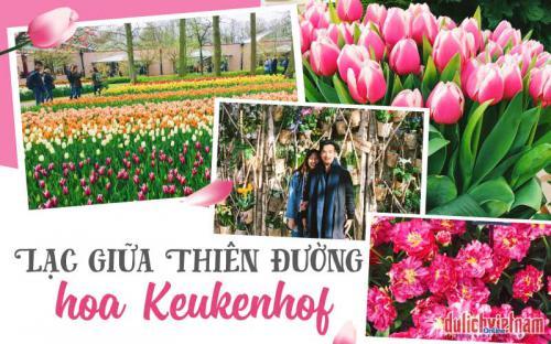 Xứ sở cối xay gió có thiên đường hoa Keukenhof khiến triệu trái tim say đắm