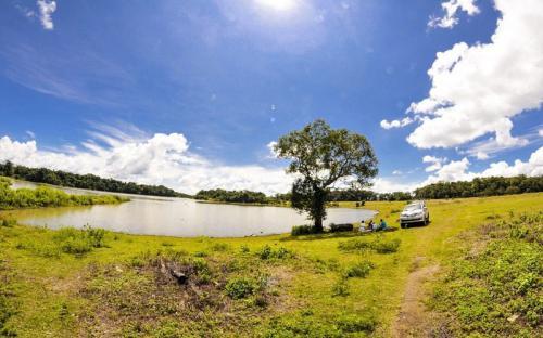 Thổn thức vẻ đẹp Trảng cỏ Bù Lạch - Bình Phước
