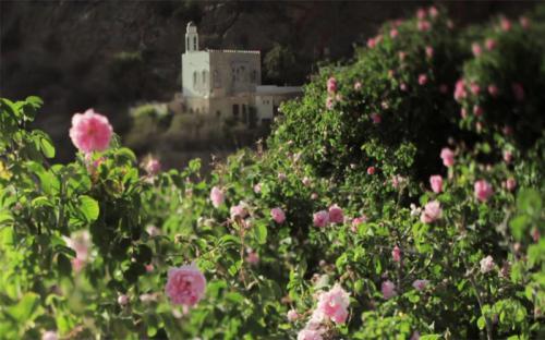 Ngạc nhiên ngọn núi màu hồng chỉ xuất hiện mỗi năm một lần