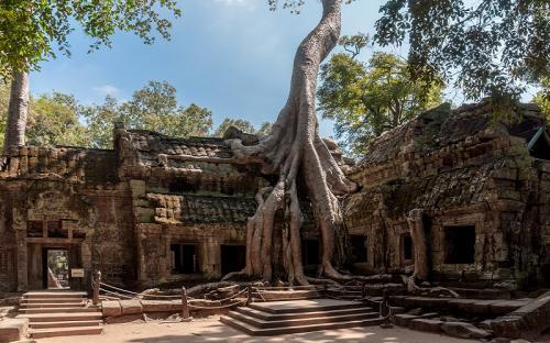 Khám phá đền Ta Prohm của những rễ cây huyền bí khi du lịch Campuchia