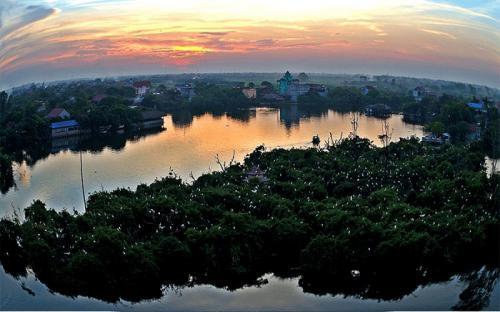 Đảo cò Chi Lăng Nam bức tranh thiên nhiên hoang dã miền Bắc Việt Nam