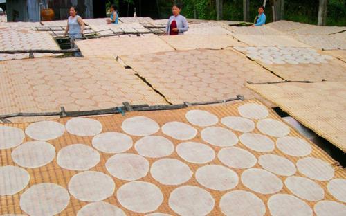Bánh tráng Thuận Hưng – Làng nghề bánh tráng truyền thống tại Cần Thơ