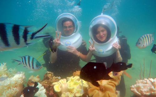 Trải nghiệm đi bộ dưới đáy biển, ngắm san hô tại Khu du lịch Con Sẻ Tre