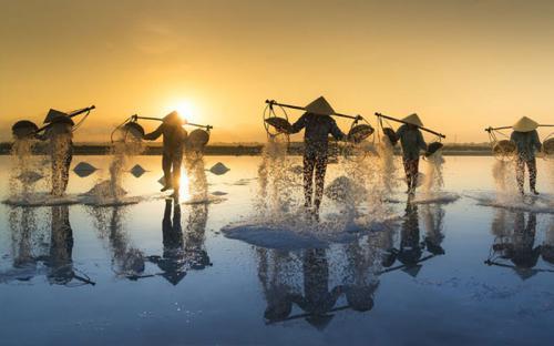 Vẻ đẹp của cánh đồng muối Bạch Long - Nam Định