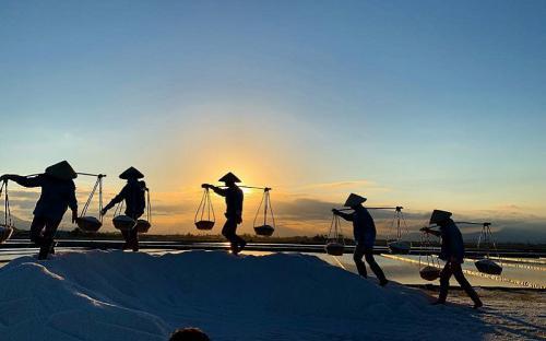 Khám phá cánh đồng muối ở Nha Trang siêu hot