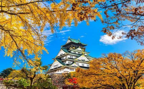 """Ghé thăm Osaka – """"Thiên đường"""" mùa thu Nhật Bản"""