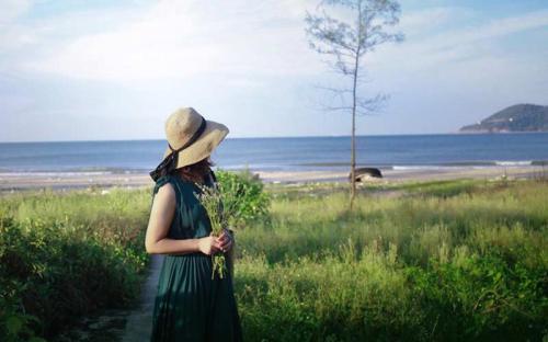 Ngày hè rực rỡ với những đồi hoa khoe sắc trên biển Cửa Lò
