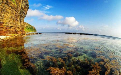 Khám phá thiên đường san hô trên đá trầm tích hàng triệu năm ở đảo Bé