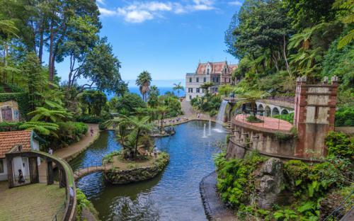 Những điều khiến Madeira đáng yêu