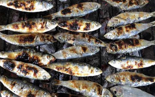 Cá trích nướng Thạch Kim – mặn mòi hương vị biển cả