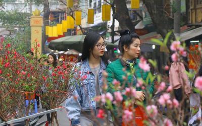 Sắc xuân tại những chợ hoa nổi tiếng Hà thành dịp Tết Nguyên đán 2019