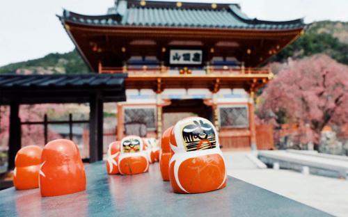 Ghé thăm ngôi chùa Katsuo - nơi chứa hàng nghìn búp bê may mắn Daruma