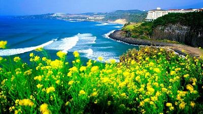 Những điểm đến thú vị ở ngoại ô thành phố Jeju