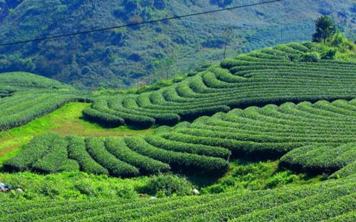 Những điểm du lịch nổi tiếng ở Thái Nguyên nhất định phải ghé qua