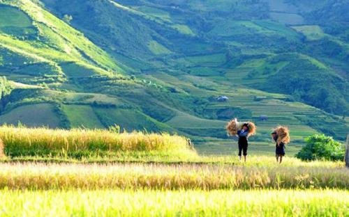 Đến Yên Bái, bạn đã ghé thăm những chốn này lần nào chưa?