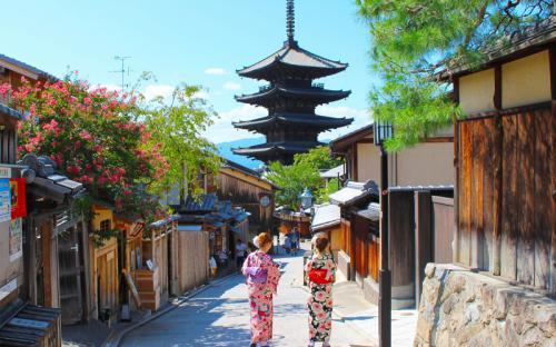 Vì sao nên đi du lịch Tokyo vào mùa hè?