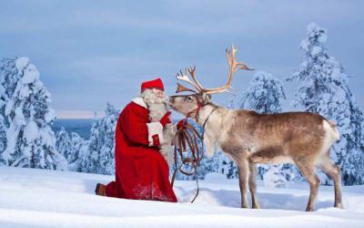 Giáng sinh ở LapLand có điều gì đặc biệt?