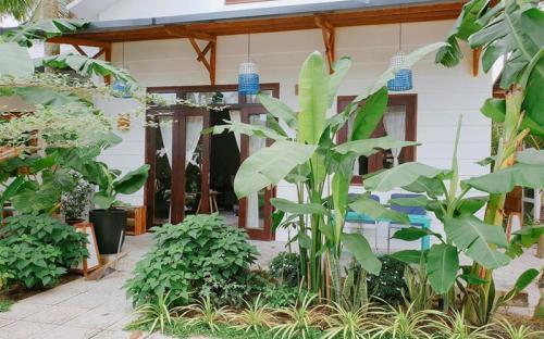 """6 homestay ở Phú Quốc """"chuộng"""" không gian vườn xanh mát"""