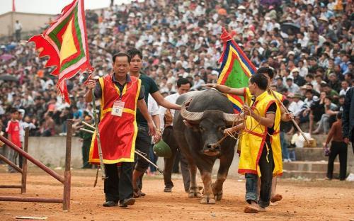 Lễ hội truyền thống ở Phú Thọ niềm tự hào nơi đất Tổ
