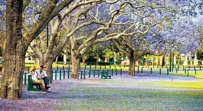 Những địa danh du lịch nổi tiếng ở thành phố Brisbane