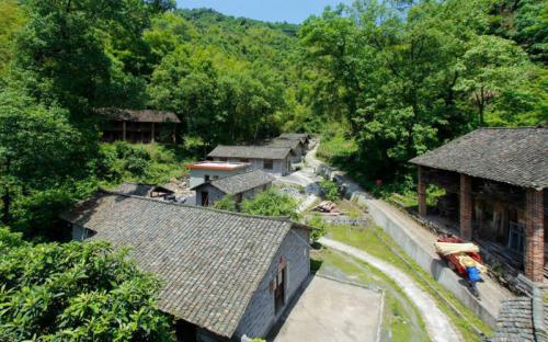 Độc đáo ngôi làng Taolin sản xuất giấy từ cây tre ở Trung Quốc