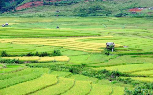 Vẻ đẹp Mù Căng Chải thuộc top vùng núi đẹp nhất thế giới (P1)