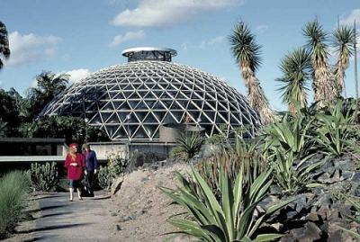 Tham quan vườn bách thảo Brisbane