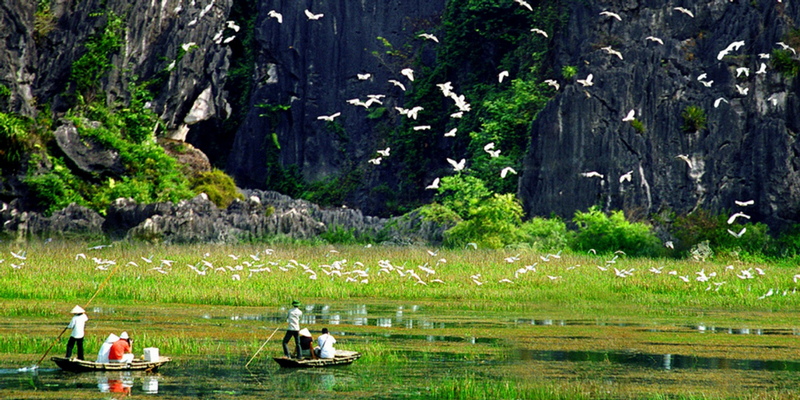 Chiêm ngưỡng khung cảnh tuyệt diệu ở vườn chim Thung Nham