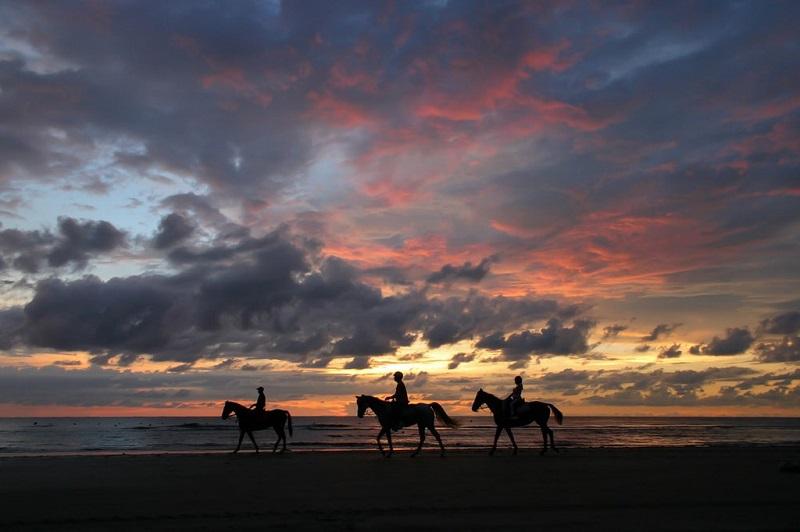Cưỡi ngựa ở Tuaran's Pantai Dalit