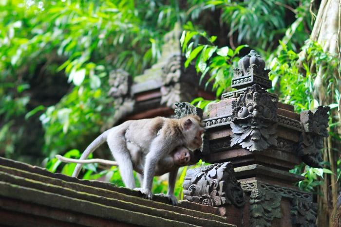 Bali - khám phá 10 thắng cảnh tuyệt đẹp ở bali indonesia - 8